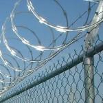 La CCAR Condemna L'ús De Les Fulles I Exigeix La Seva Retirada A Ceuta I Melilla