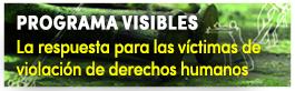 Programa Visibles